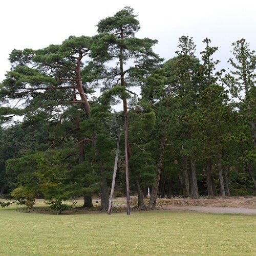毛越寺の9月の風景写真