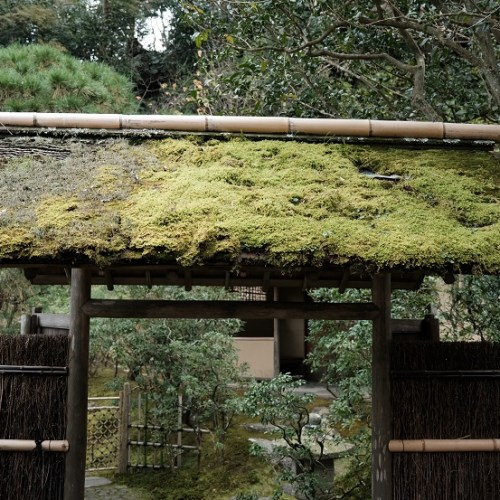 鎌倉東慶寺の写真