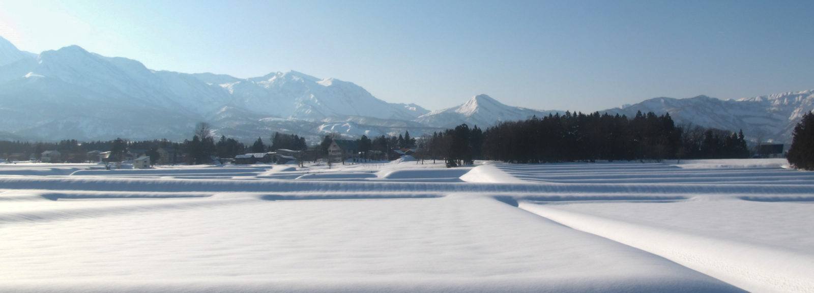 Session d'hiver