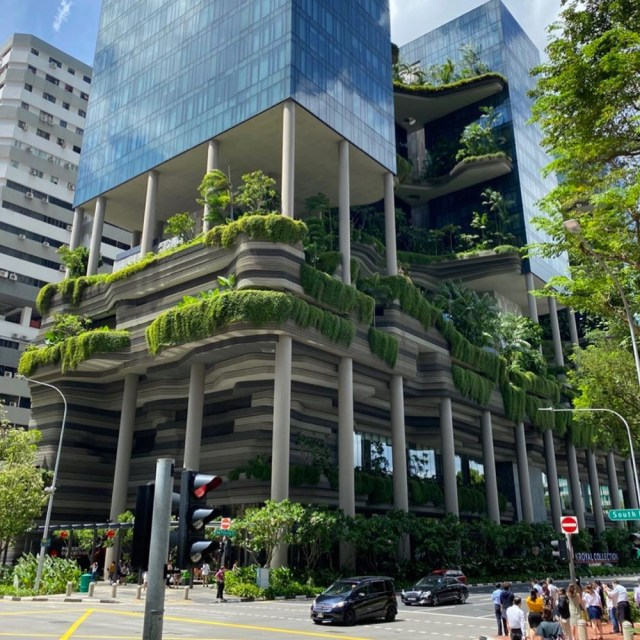 Gardens spilling over from a Singapore hi-rise