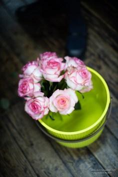 個展 西尾 真奈美「花とコンパス」