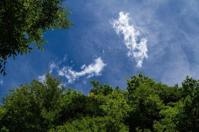 木へんに山で杣と読む