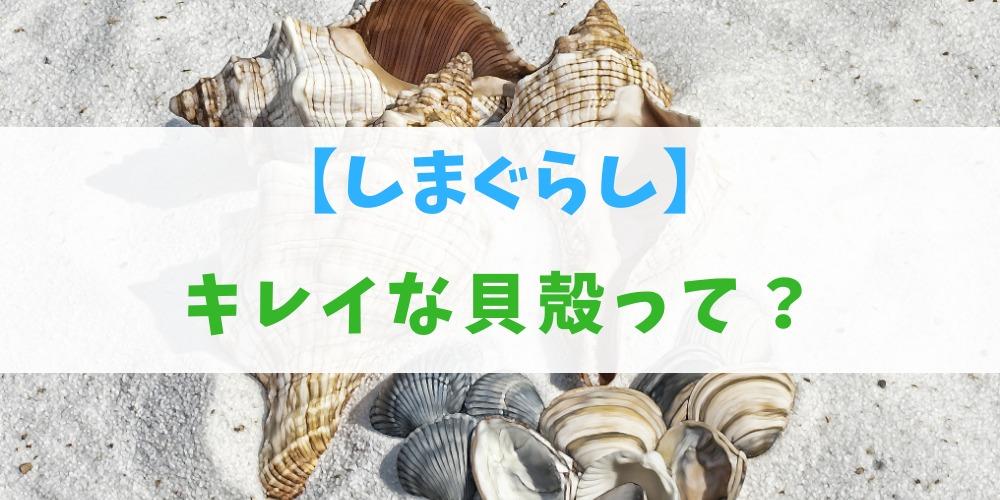 しまぐらしの「キレイな貝殻」とは?使い道と集め方