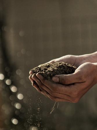 Licitacija poljoprivrednog zemljišta – raspisan 2. krug