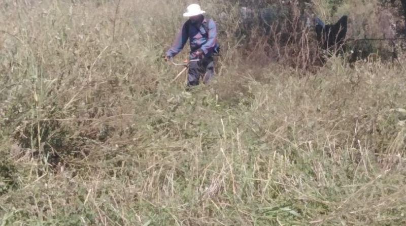 Video INFO Idvor U toku uređenje mesnog groblja