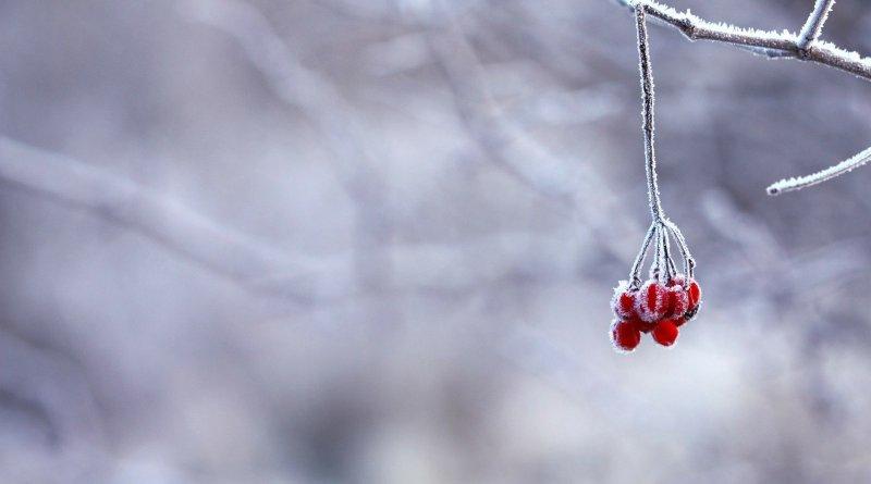 Da se smrzneš: Sledeća nedelja u minusu