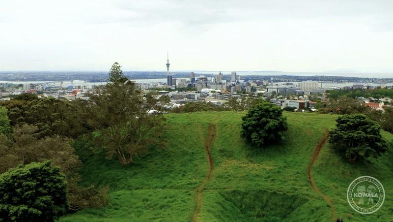 Comment J Ai D 233 But 233 Mon Whv 224 Auckland Kowala