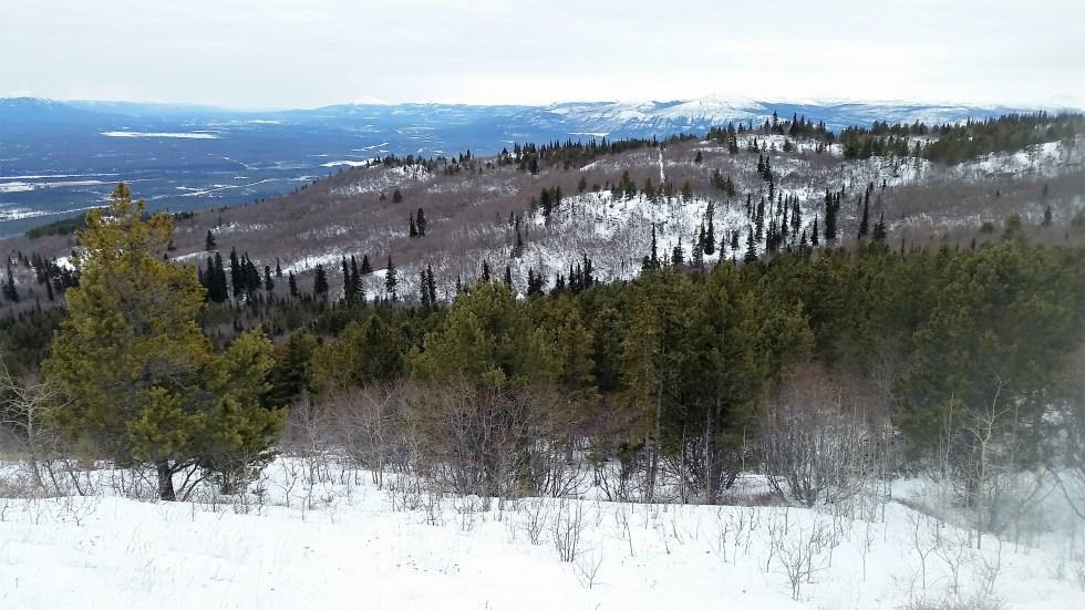 Vue sur Vista Summit