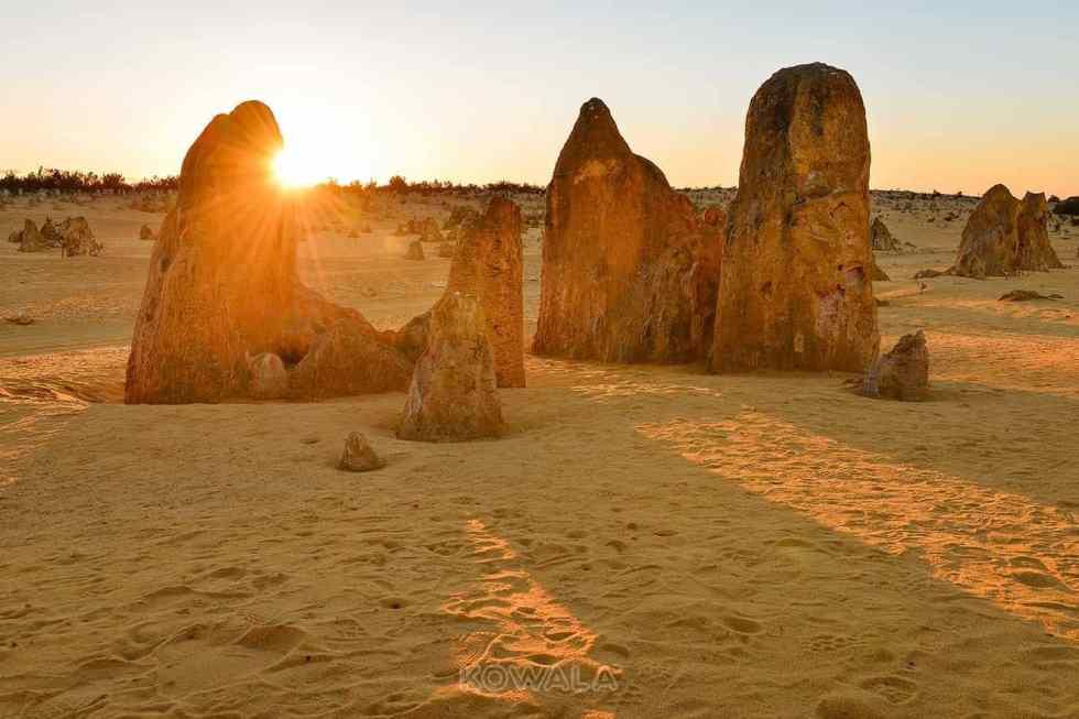 pinnacles nambung national park western australia coucher de soleil