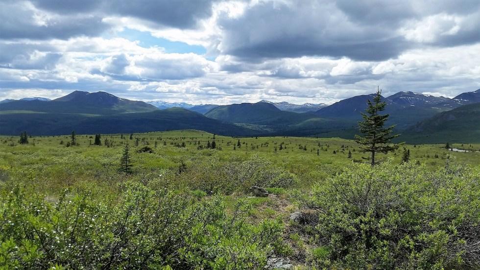 randonnées en été au Yukon - Golden Horn