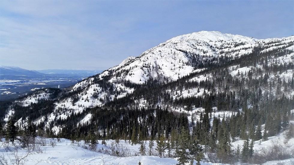 randonnées en hiver au Yukon - Grey Mountain