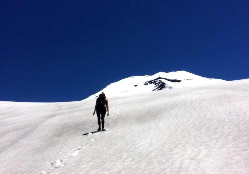 Volcan Lonquimay, dans la Réserve Nationale Malalcahuello, en Araucanie, au Chili