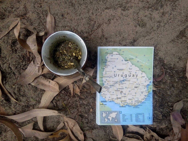 A Voir Et Faire En Uruguay Mate Stop Camping Village Suisse
