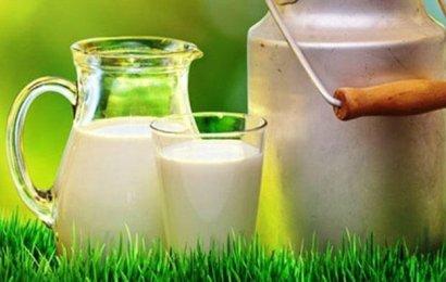 Bakan Pakdemirli'den Süt Üreticilerine Müjde!