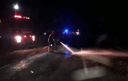 Otomobil Sürüye Çarptı: 2 Kişi Yaralandı, 26 Koyun Telef Oldu