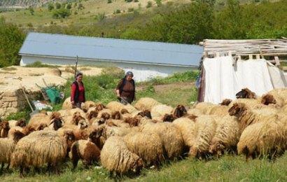 Mersin'de Kadın Yetiştiriciye Destek