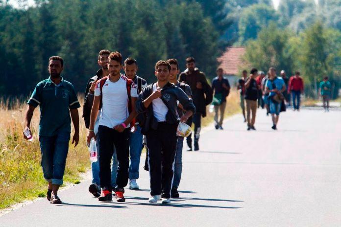 Pinkamindszent, 2015. szeptember 12. A magyar-osztrák határ felé tartó illegális bevándorlók Pinkamindszent határában 2015. szeptember 12-én. MTI Fotó: Varga György