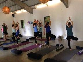 Séance de yoga Ile Maurice