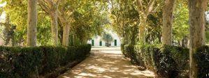 avenidas con jardin para tu boda