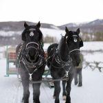 carruaje de novios boda invierno