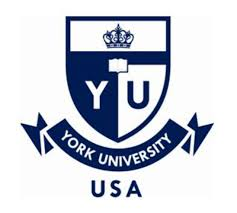 Moez Naouar International Academy is representor of York University for Tunis