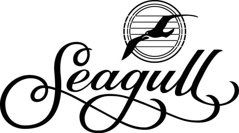 12 Best Acoustic Guitar Brands in 2021 (The Ultimate Chosen List) - Seagull Guitar