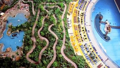 Photo of Trópusi fedett erdő egy volt Szovjet hangárban.