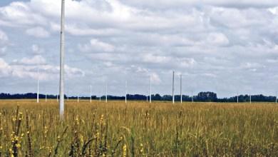 Photo of Az állam képtelen felépíteni az Ócsai Lakóparkot