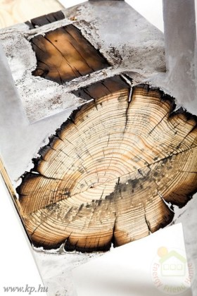 woodcasting4