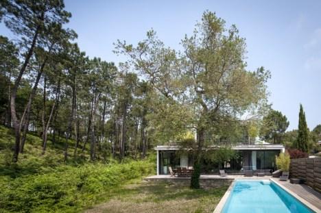 Green-Lush-Vegetation-Villa-Seignosse