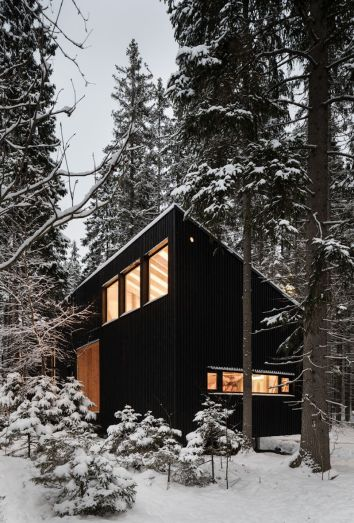 A-house-and-Studio-at-the-edge-of-the-forest