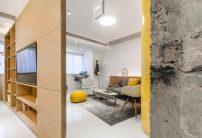 Small-48-sqm-apartment-in-shanghai-768x525