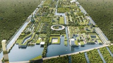 Photo of Stefano Boeri: utópiai intelligens város, Cancun közelében, több mint 7 millió növénnyel