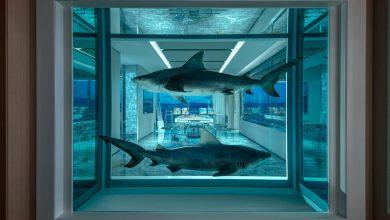 Photo of Damien Hirst éjszakánként 100 000 dolláros szállodai lakosztálya Las Vegasban