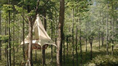 Photo of Hipp-hopp felépítheted a saját Airbnb-d az O2 erdőjáró készletével