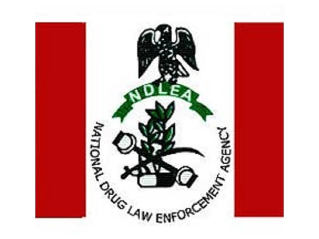 NDLEA  intercepts 75.8kg of cannabis in Ondo and Rivers states.