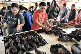 China bans sale of wild Animals in the market,sets drastic measures to deal with people who smuggle them into the country