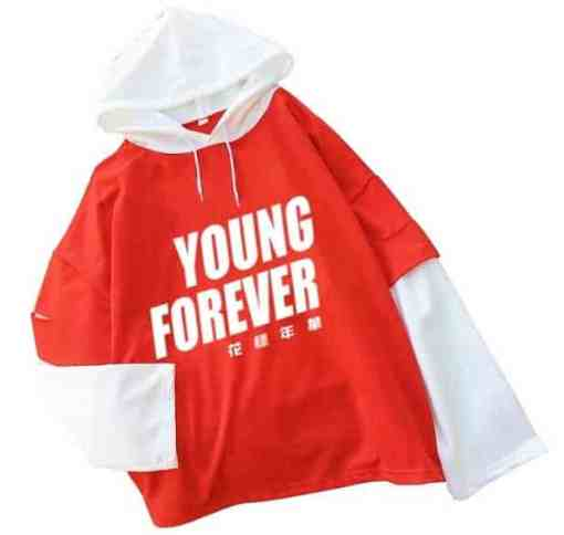 Pull BTS Young Forever coréen