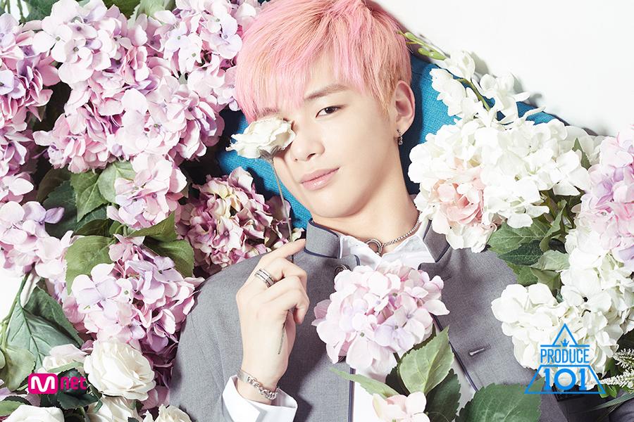 korea korean kpop idol boy band group produce 101 kang daniel pink hair hairstyles profile season 2 hairstyle guys men kpopstuff