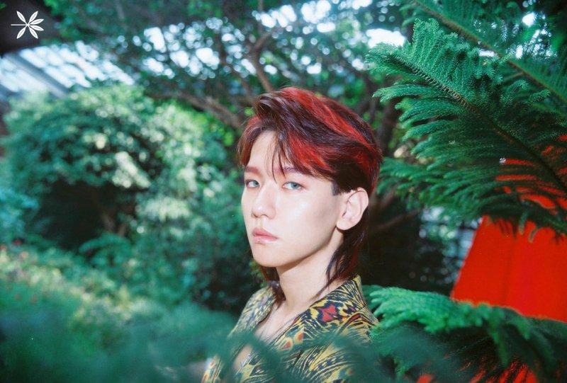 Kpop Korean Hair and S...
