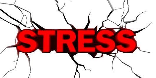 ストレス発散のつもりが…貯玉が減ってストレスが貯まった一日
