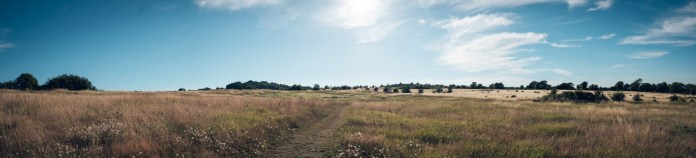 Bornholmsk landskab