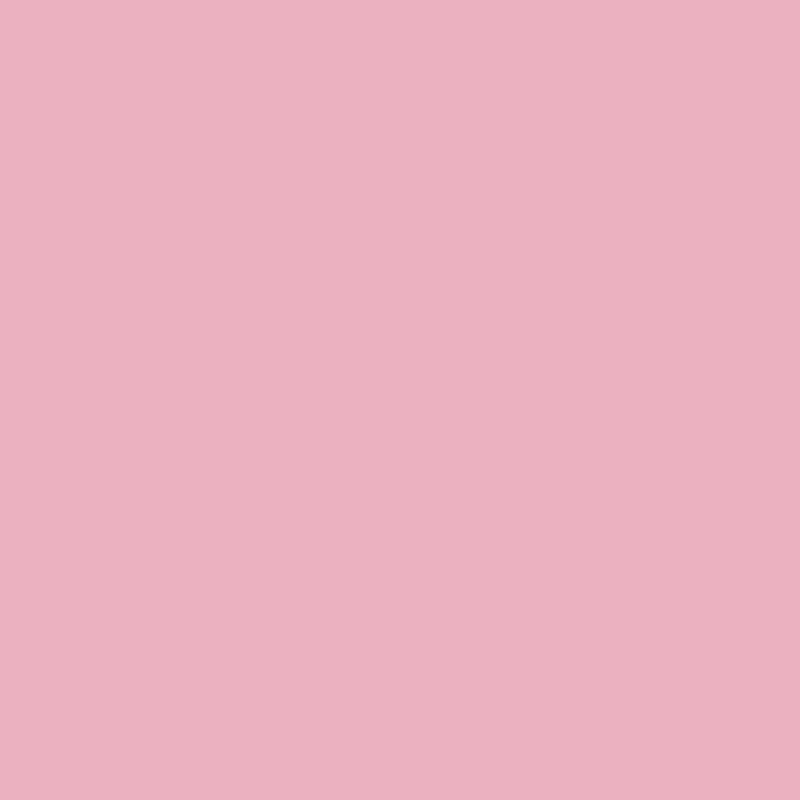 Egger U 363 ST9 Фламінго рожевий Image