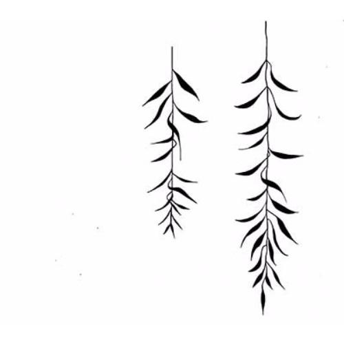 willow-leaf-2-web