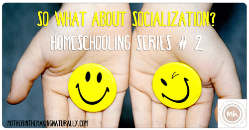 Homeschooling #2: So what about socialization?