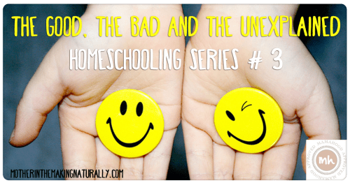 Homeschooling #3: The good, the bad and the Unexplained