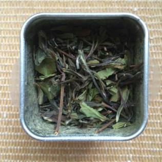 Marvellous Mango White Tea leaves in tin