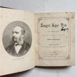 Предлог книга - Смртта на Смаил-ага Ченгиќ од Иван Мажураниќ