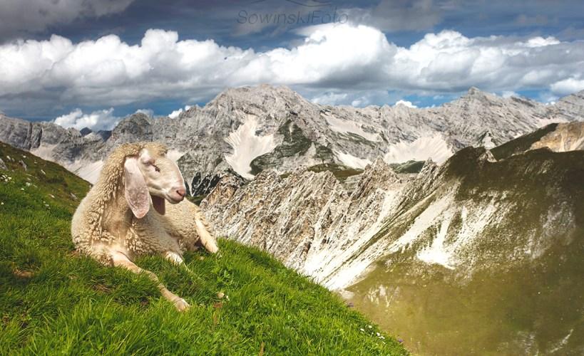 Alpy krajobraz kup