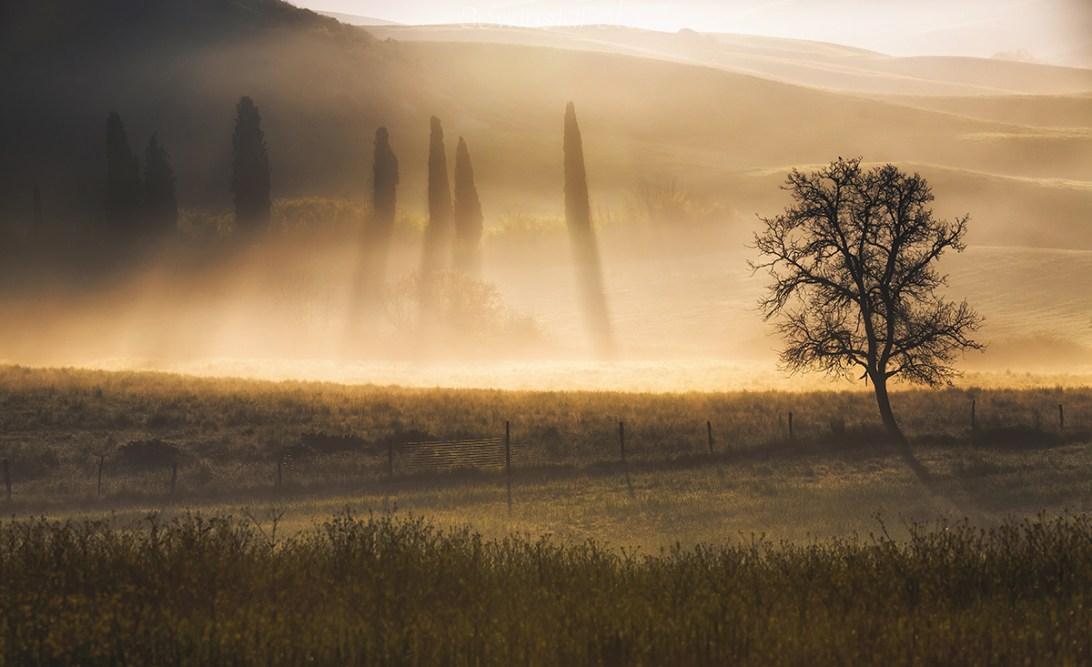 Cienie Toskanii /Włochy